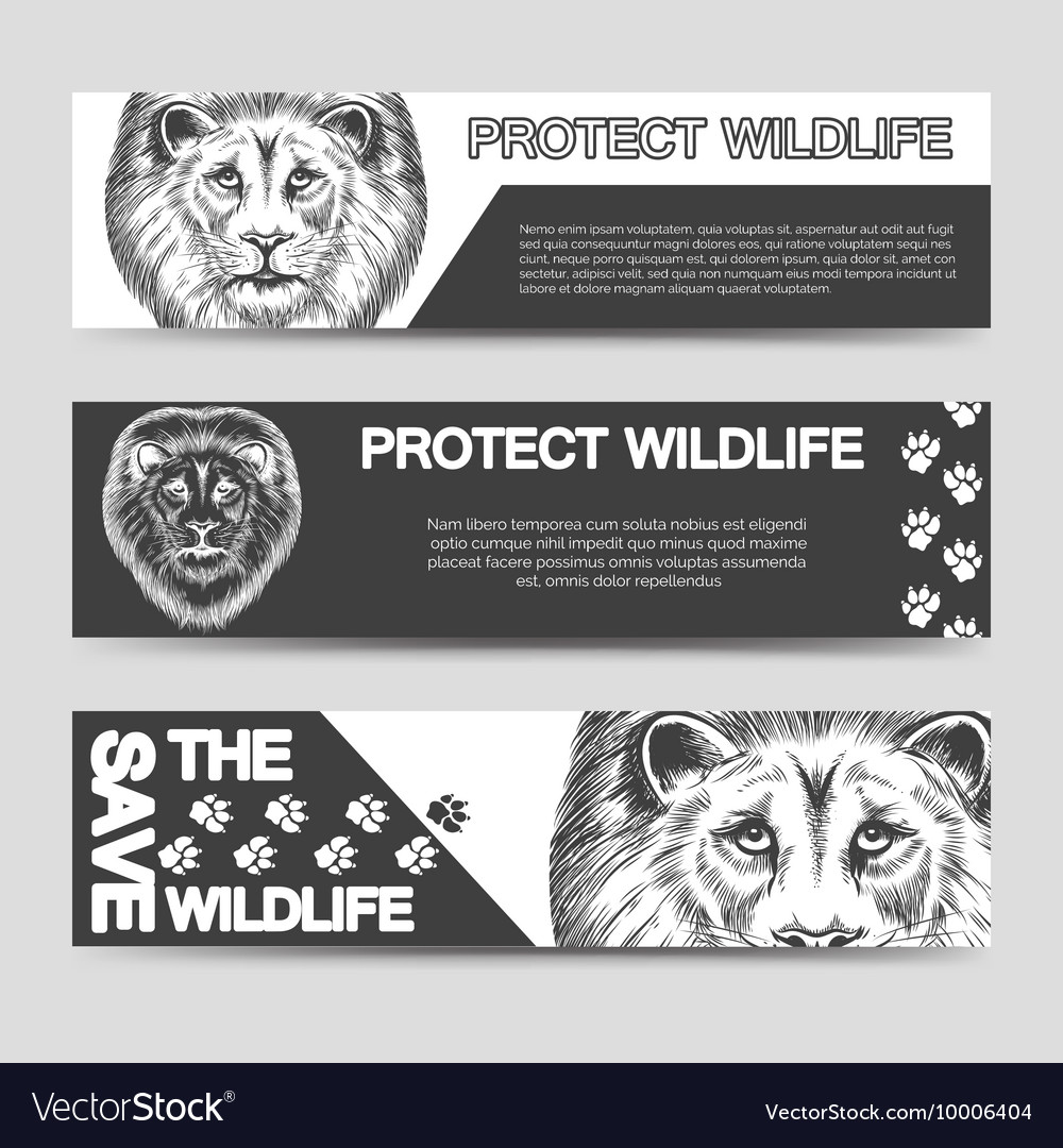 Protect nature banners with lion vector