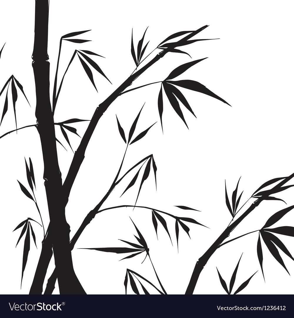 Bamboo isolated vector