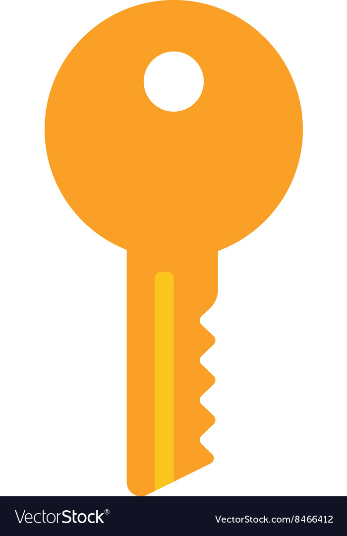 House or car key vector
