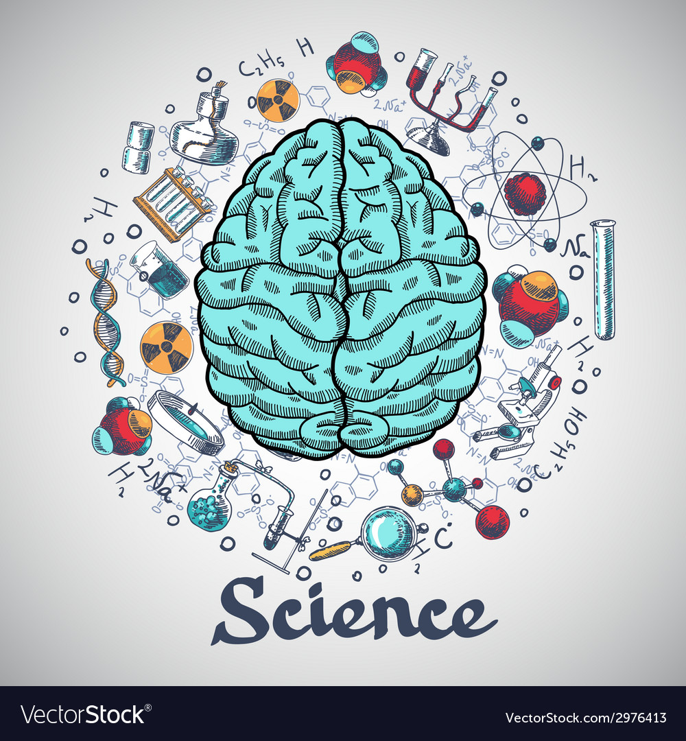 Brain sketch science concept vector