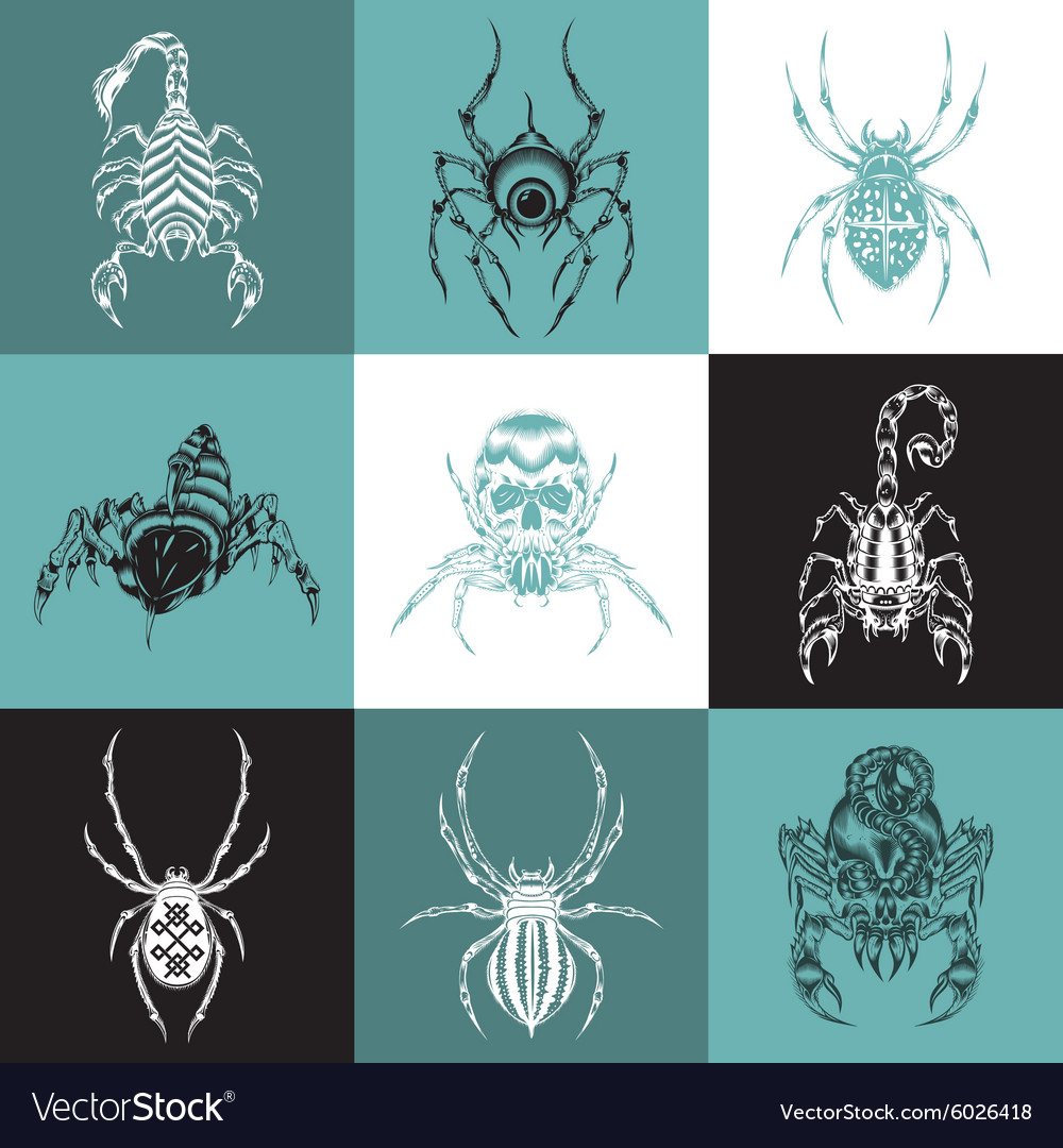 Set of labels with the image of arachnids vector