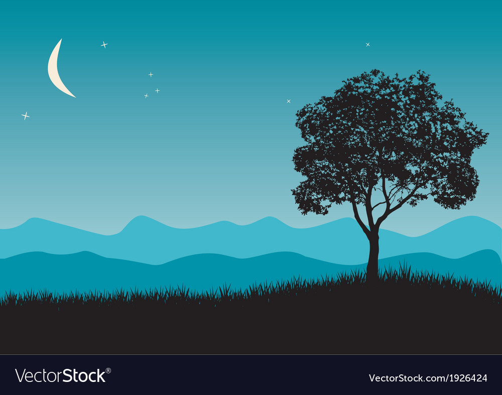 Tree in night scene vector
