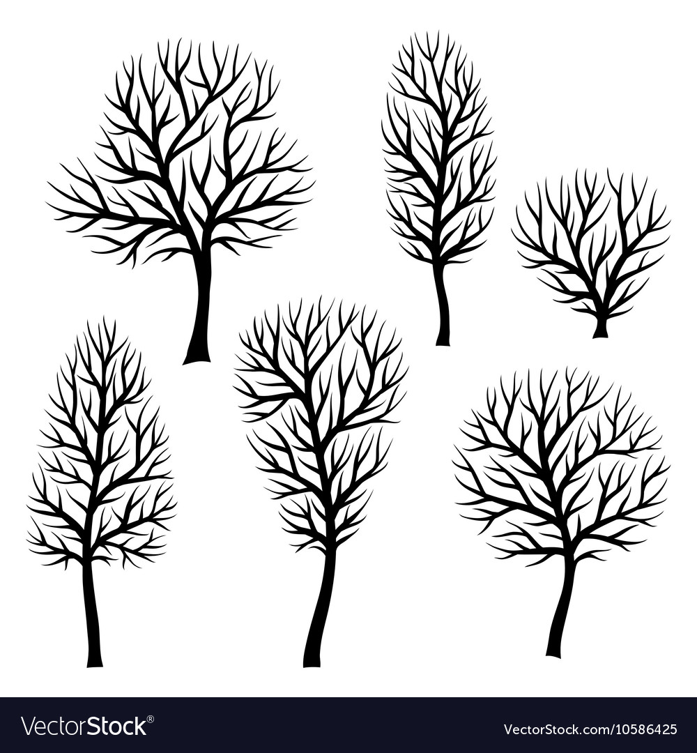 Collection of abstract stylized black trees vector