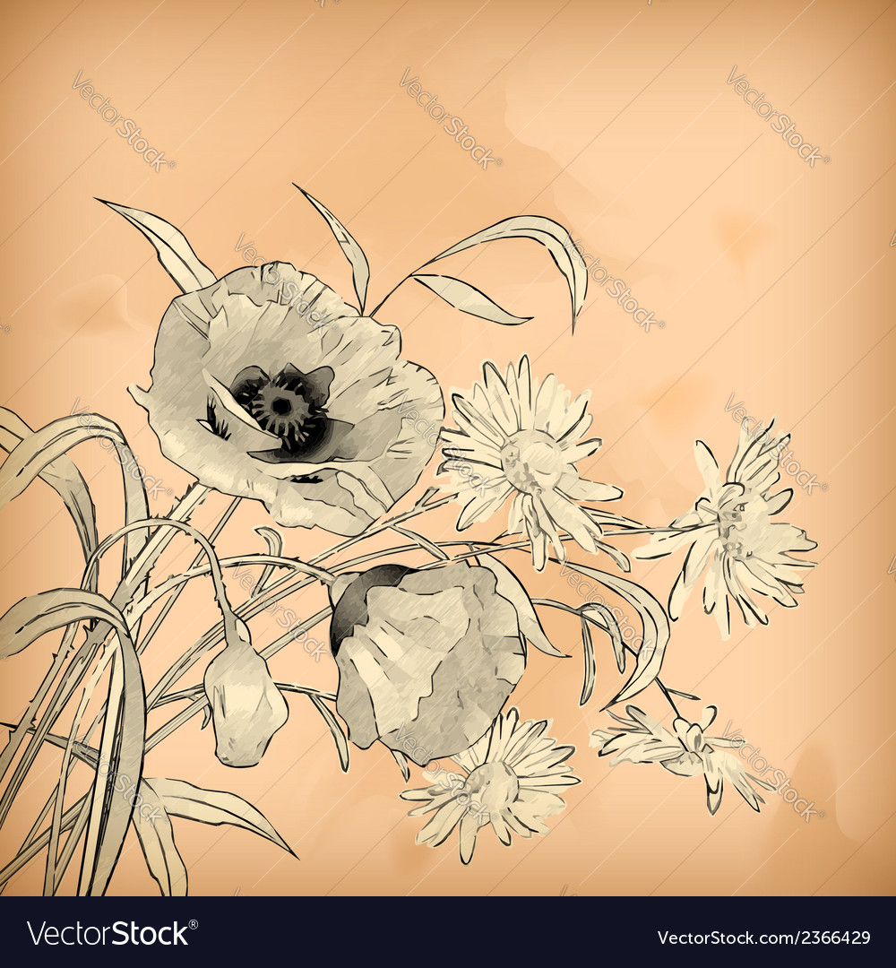 Watercolor pencil hand drawing flowers vector