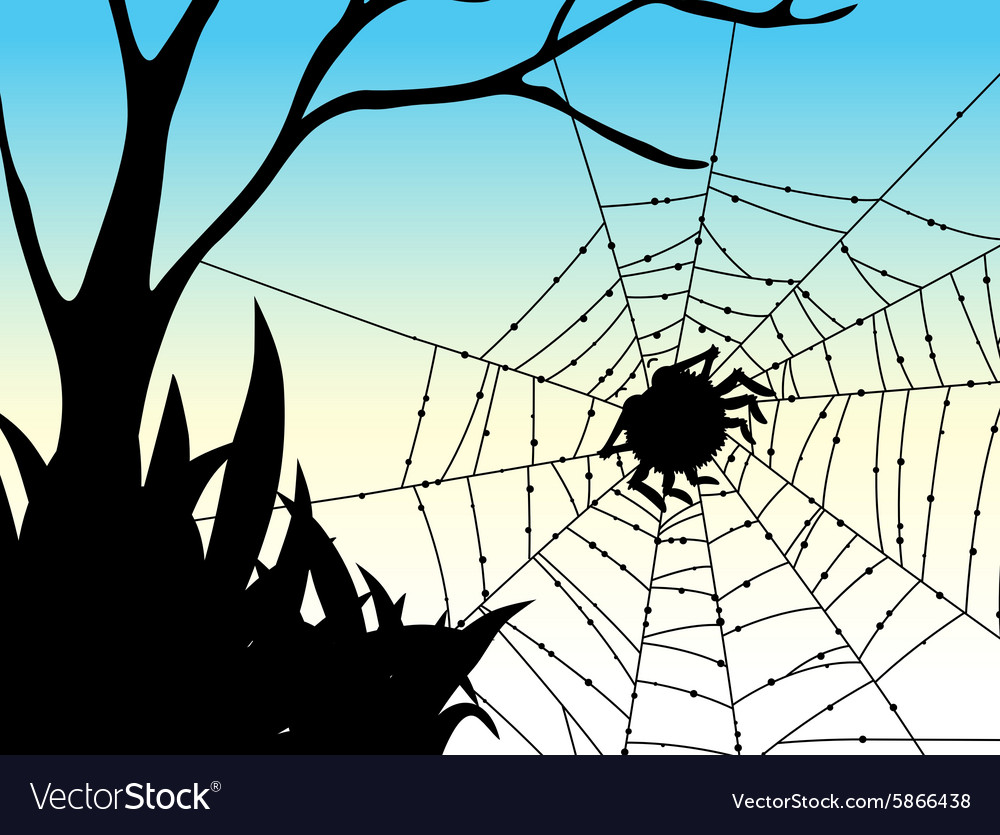 Silhouette spider on web vector
