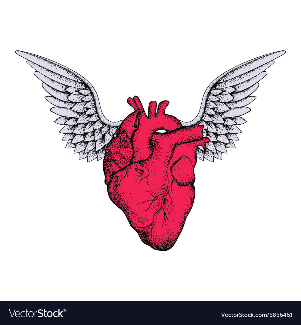 Hand drawn elegant red heart with wings sketch for vector