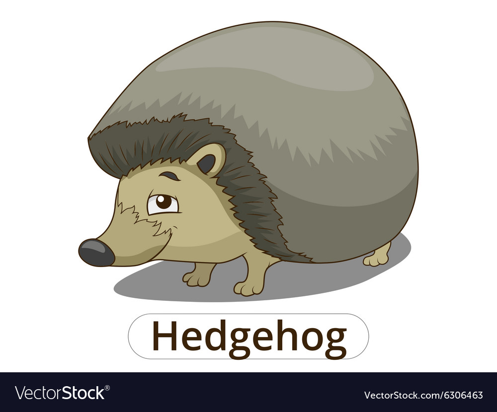 Forest animal hedgehog cartoon vector