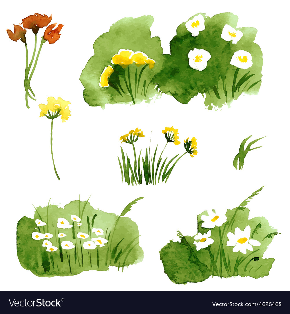Floral summer background with grass and flowers vector