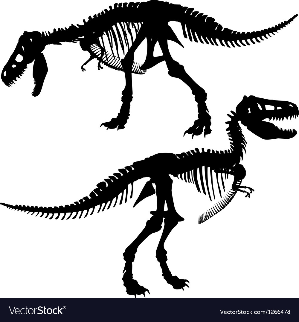 T rex skeleton vector