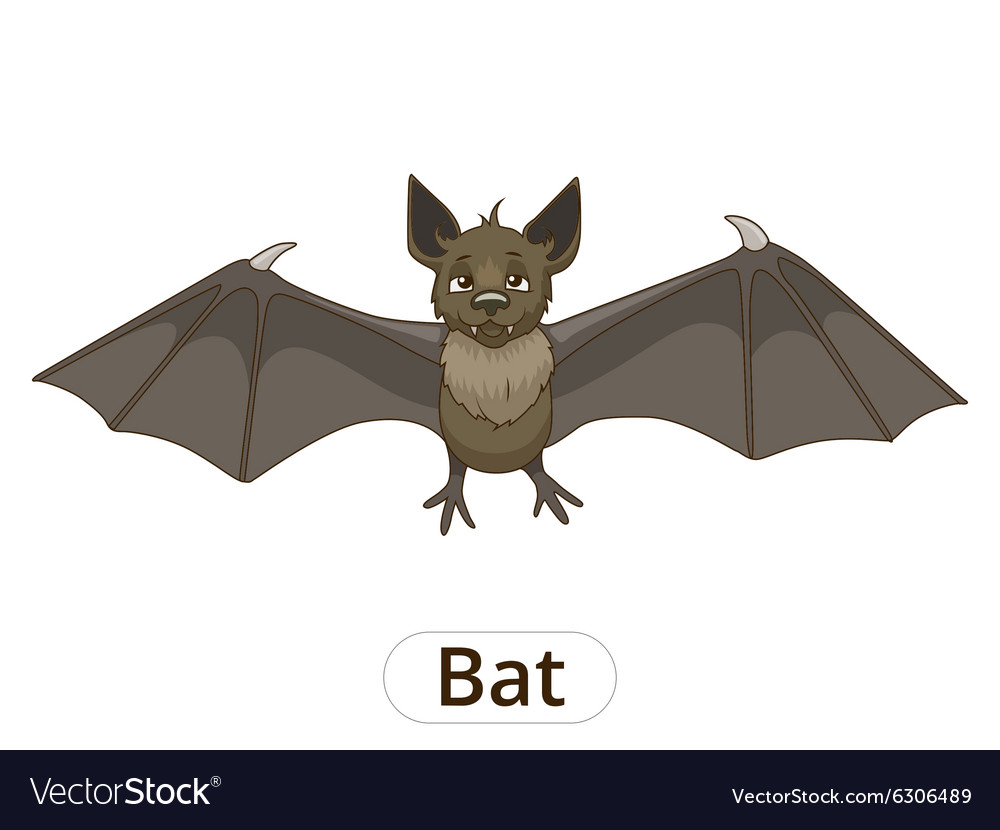 Forest animal bat cartoon vector