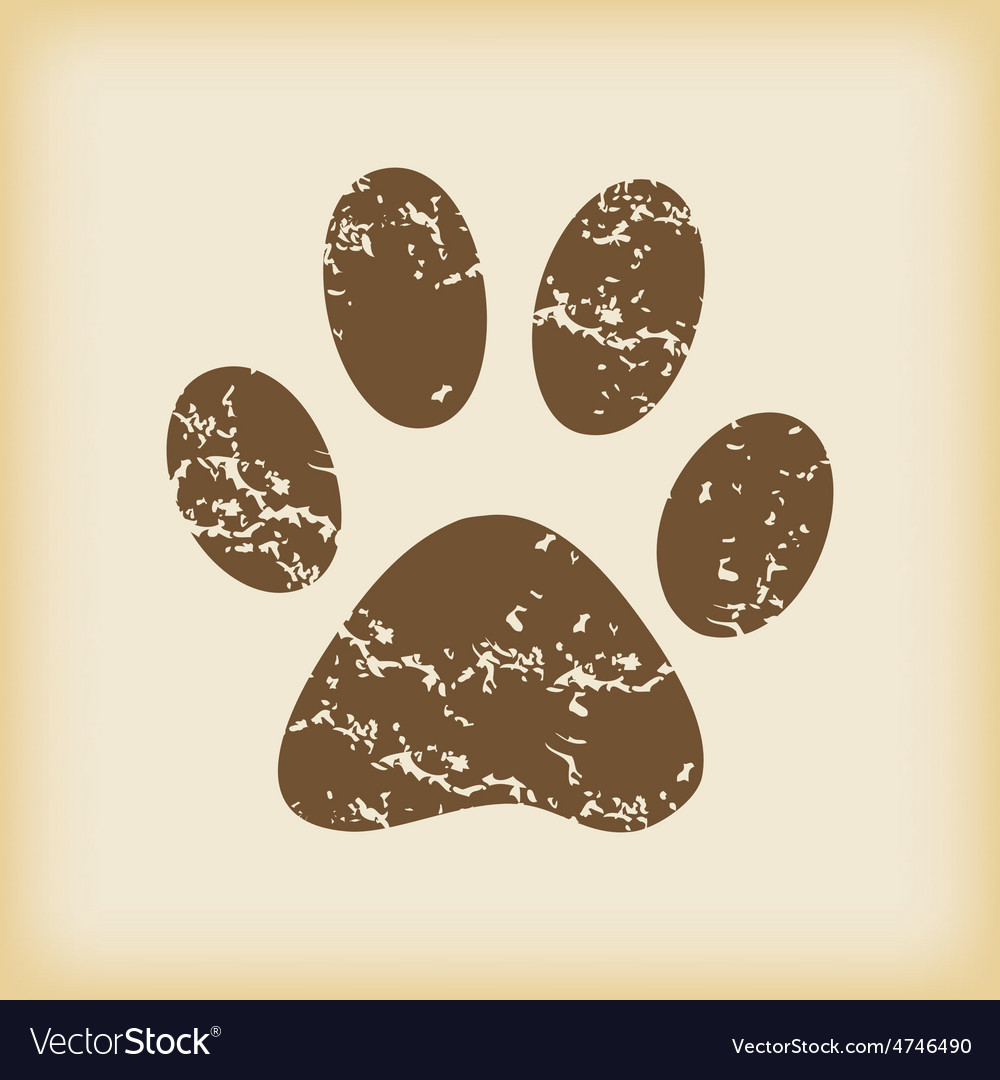 Grungy paw print icon vector