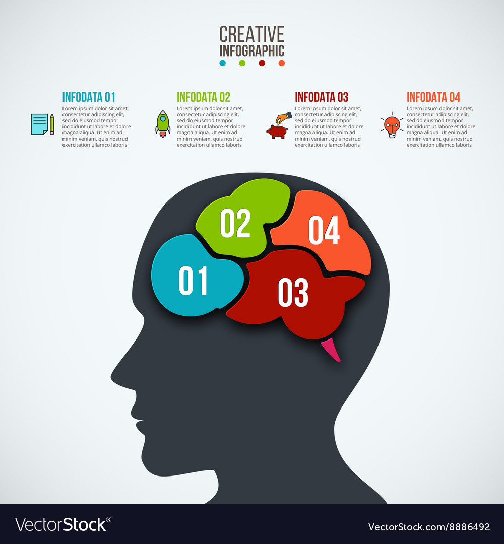 Infographics template with head and brain vector
