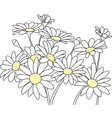 Daisies Outline vector image