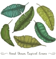six different hand drawn banana leaves vector image vector image
