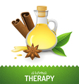aroma therapy vector image vector image