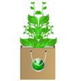 plants in bag vector image vector image