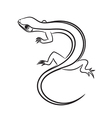 Cartoon of little lizard outlined vector image vector image