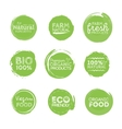 Green Eco Food Labels Health Headings vector image