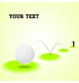 Bouncing golf ball vector image vector image