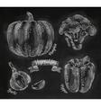 Vegetables pepper pumpkin garlic broccoli chalk vector image vector image