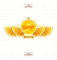 Premium quality orange juice vector image