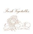Fresh vegetables banner vector image