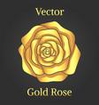 gold rose flower vector image