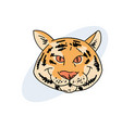 funny fat tiger face vector image