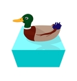 Wild duck cartoon icon vector image