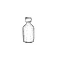 Hand drawn bottle vector image