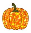 Isolated Pumpkin lantern vector image
