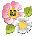 Spring time flower with qr code label vector image