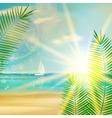 Vintage summer beach design vector image vector image