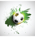 Soccer or football on a grunge background vector image
