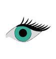 single eye with lashes icon image vector image