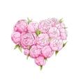 Bright peonies heart vector image