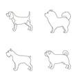 chau chau levawa schnauzer pugdog breeds set vector image