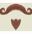 mustache and beard vector image vector image