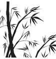 Bamboo isolated vector image
