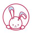 cartoon cute rabbit icon vector image