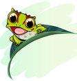 Horned frog cartoon vector image