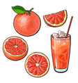 whole half quarter grapefruit and glass of juice vector image