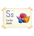 A letter S for shells vector image vector image