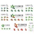 Set of company logotype branding designs flower vector image