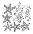 Graphic starfish collection vector image