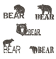 Collection of bear logotypes vector image