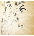Grunge Stained Bamboo Paper vector image vector image
