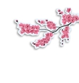 Japanese cherry Branch Cut out of cardboard with vector image