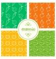 Seamless patterns with vegetables vector image