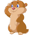 Cartoon funny Groundhog vector image vector image